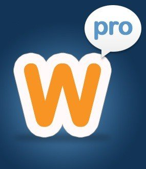 Weebly Pro Plan Features Review – Worth the Upgrade?