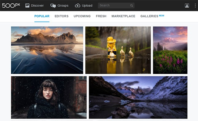 Where to Find Free Professional Images for Your Website