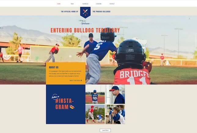 Youth nonprofit template by Wix