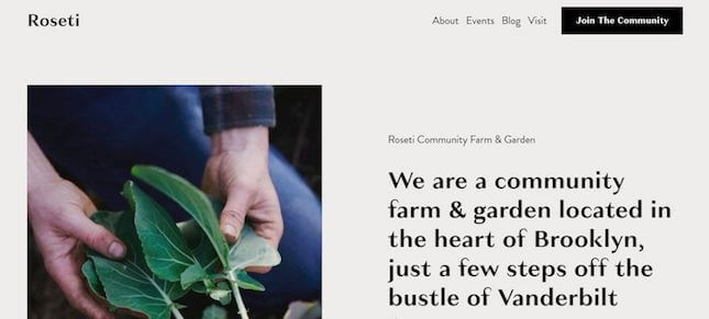 Roseti nonprofit template by Squarespace