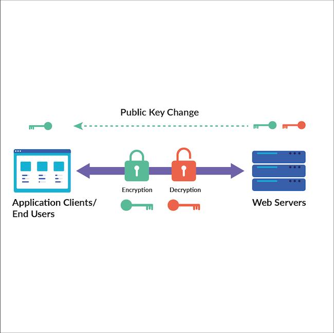 Diagram showing public key change in SSL