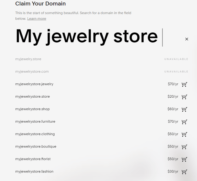 squarespace ecommerce jewelry domain