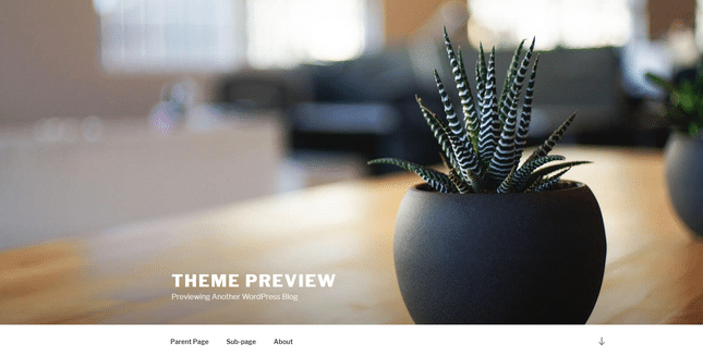 wordpress theme demo example