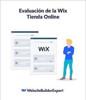 evaluacion de la wix tienda online