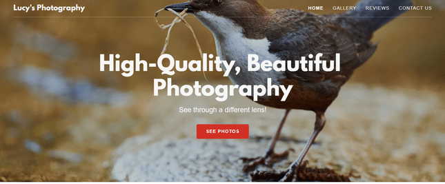 godaddy photography builder example