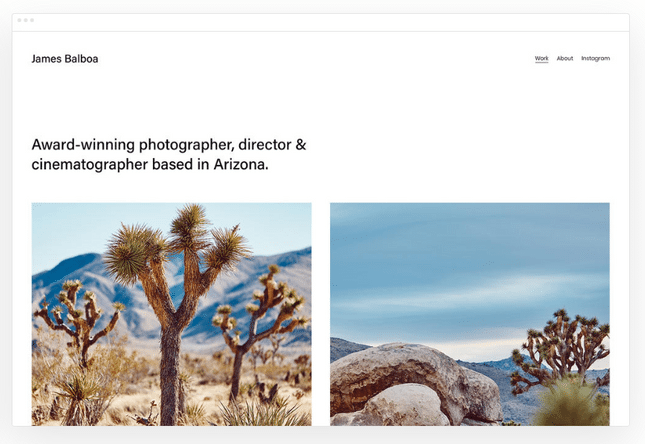 squarespace best for artists example