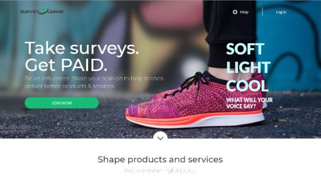 Side hustles: online surveys