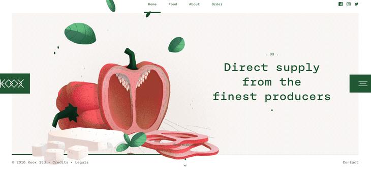 web design illustration koox example
