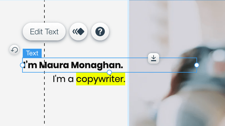 wix editor example
