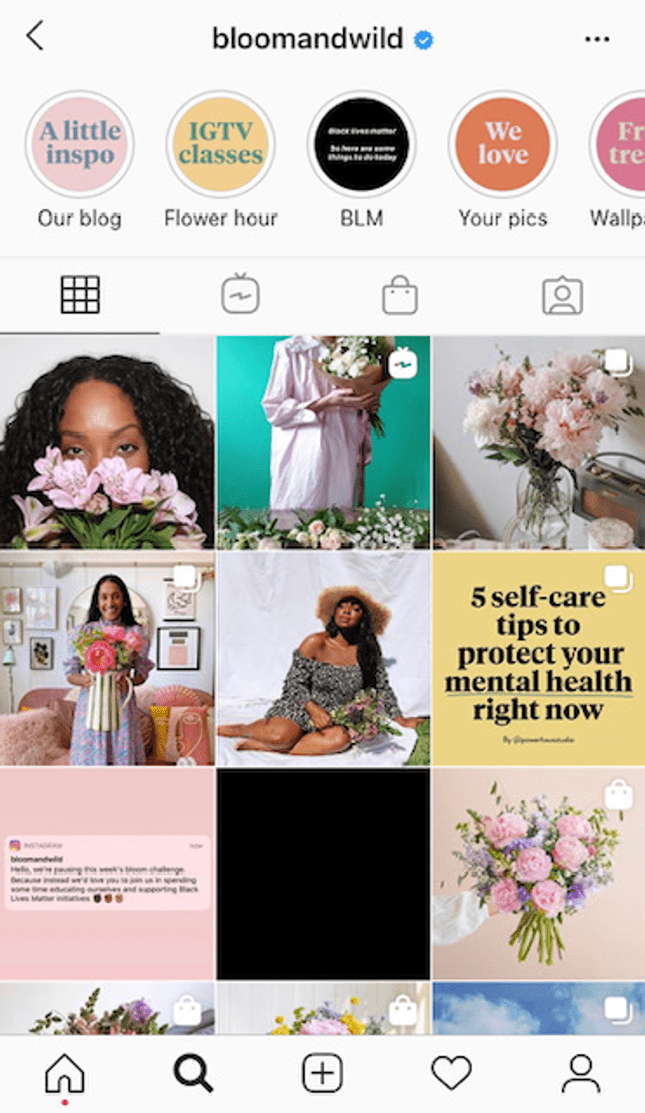 bloom and wild instagram consistent branding credibility