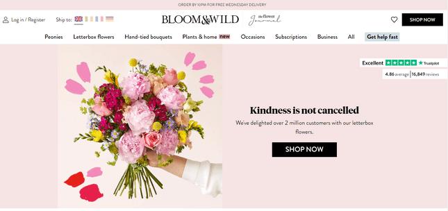 bloom and wild website credibility branding