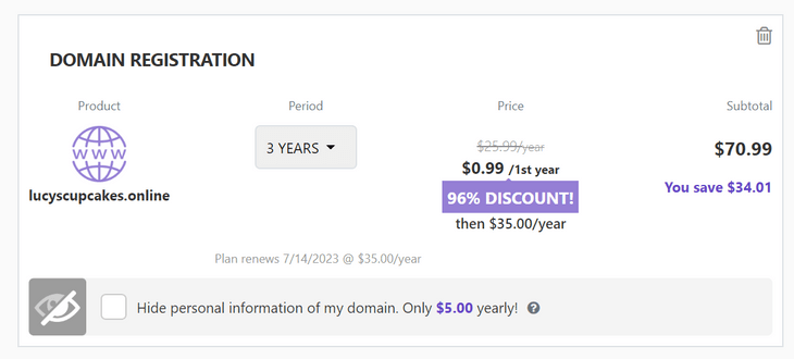 domain name registration three years hostinger checkout