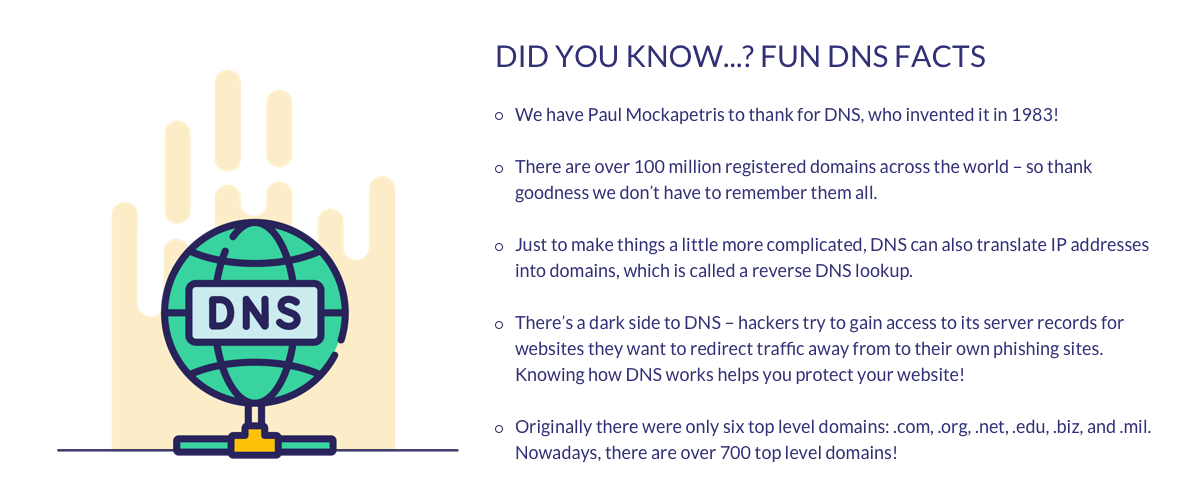 dns facts