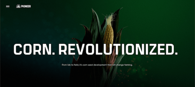 Corn Revolutionized