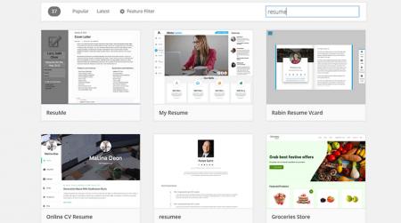 wordpress.org resume themes