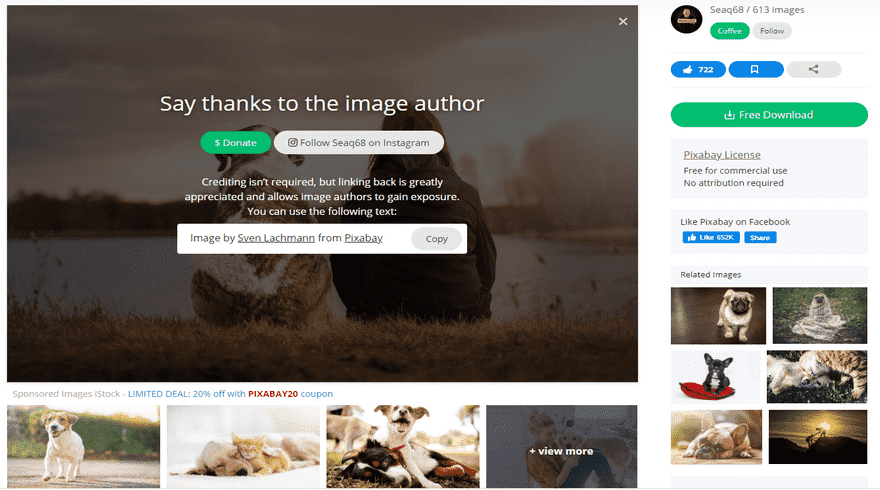 photos for websites pixabay free download