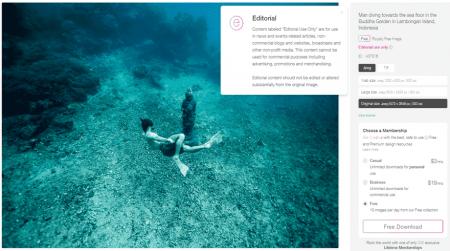 rawpixel editorial license photo example