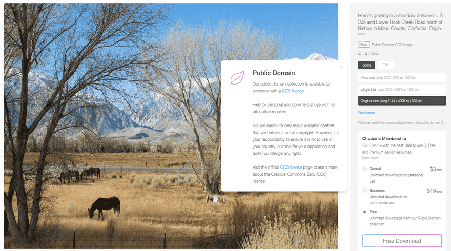rawpixel free public domain download