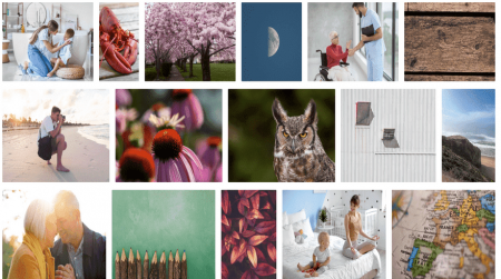 stocksnap image library photos for websites