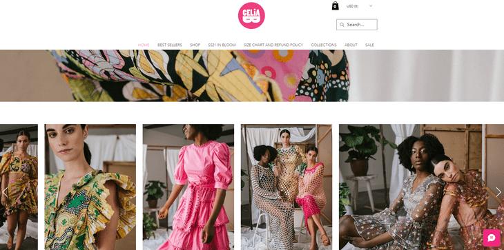 celia b wix review example website