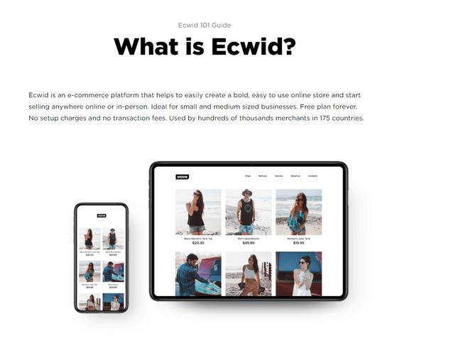 shopify vs ecwid 101 guide