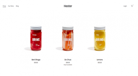 squarespace hester template