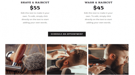 southcorner weebly business theme book appointment