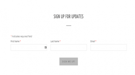 weebly blog template lily and rue newsletter
