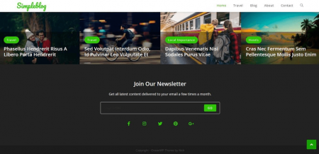 This OceanWP demo site's footer flaunts a gallery and newsletter widget.