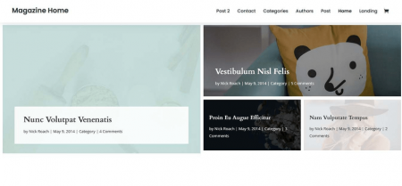 A Divi homepage, from one of the demos.