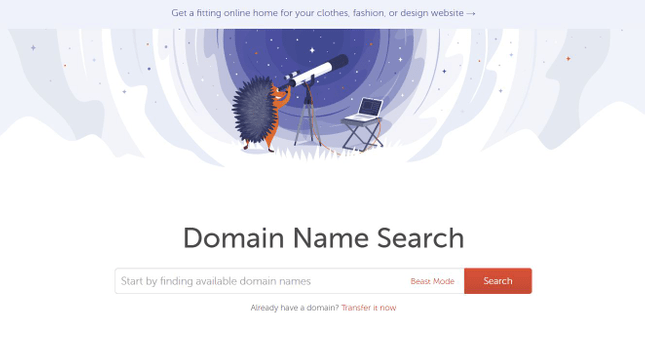 NameCheap domain search lets you check availability and purchase a domain name