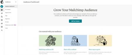 Mailchimp Audience Tab