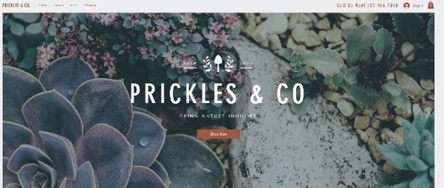 Prickles and Co