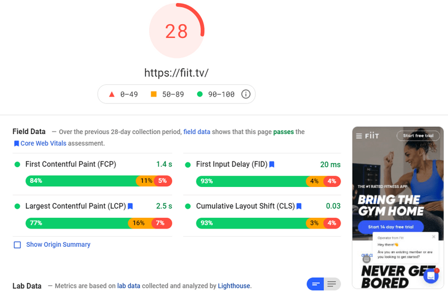 website backgrounds fiit pagespeed insight score